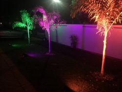 RGB Uplight